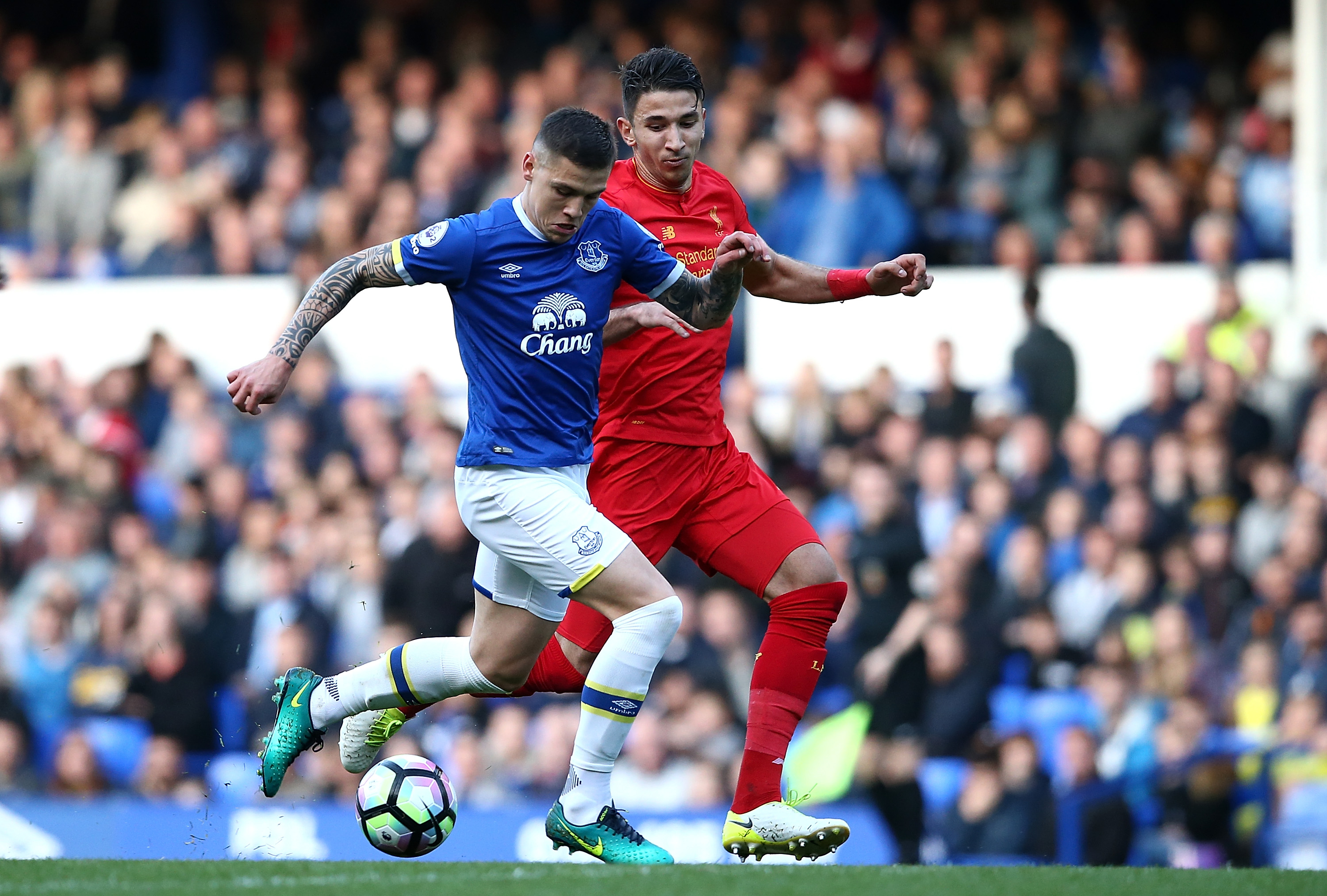 Everton's Funes Mori faces nine months out after surgery