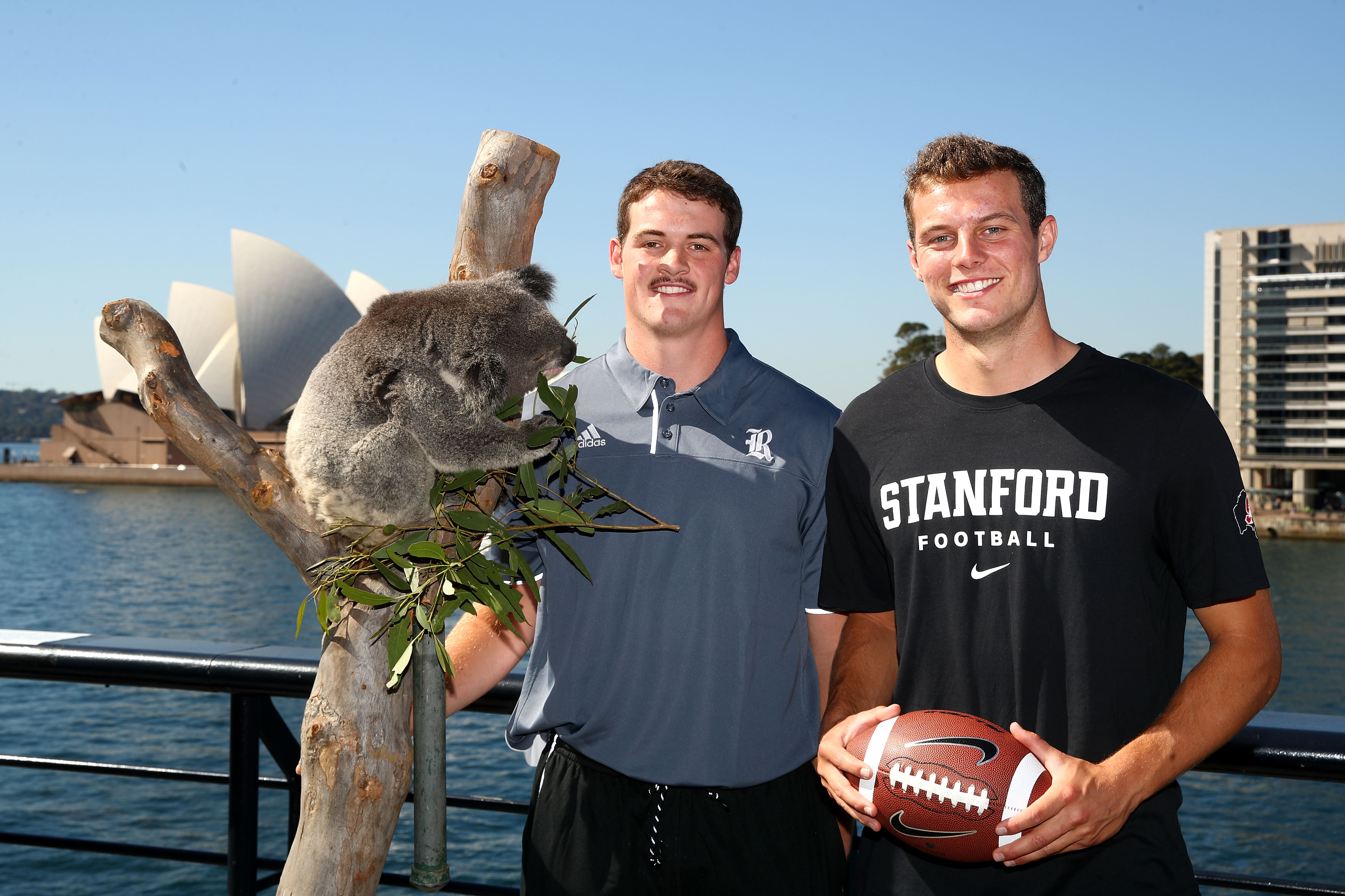 Stanford decision date in Sydney