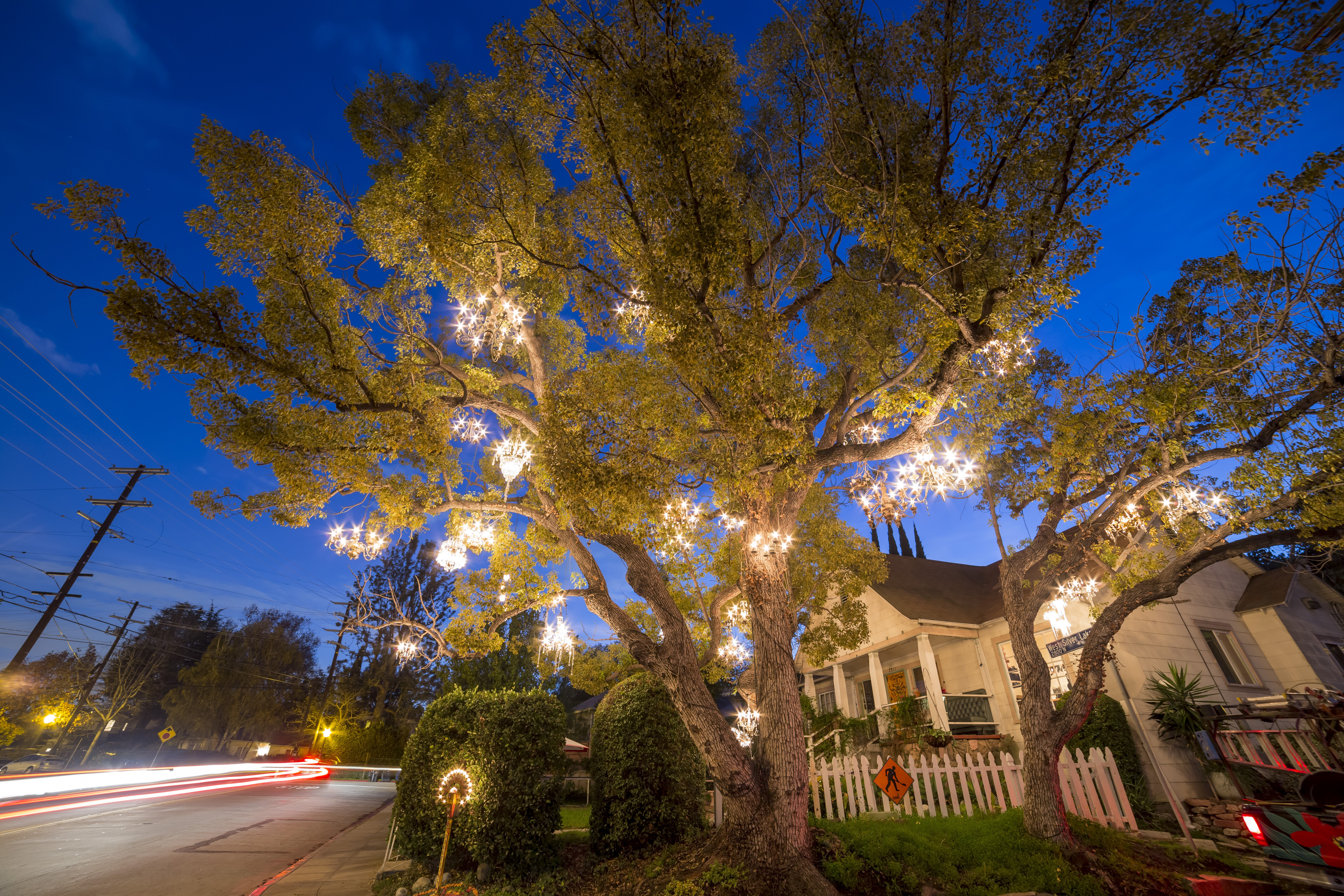 The story of the magical chandelier tree of Silver Lake - Curbed LA
