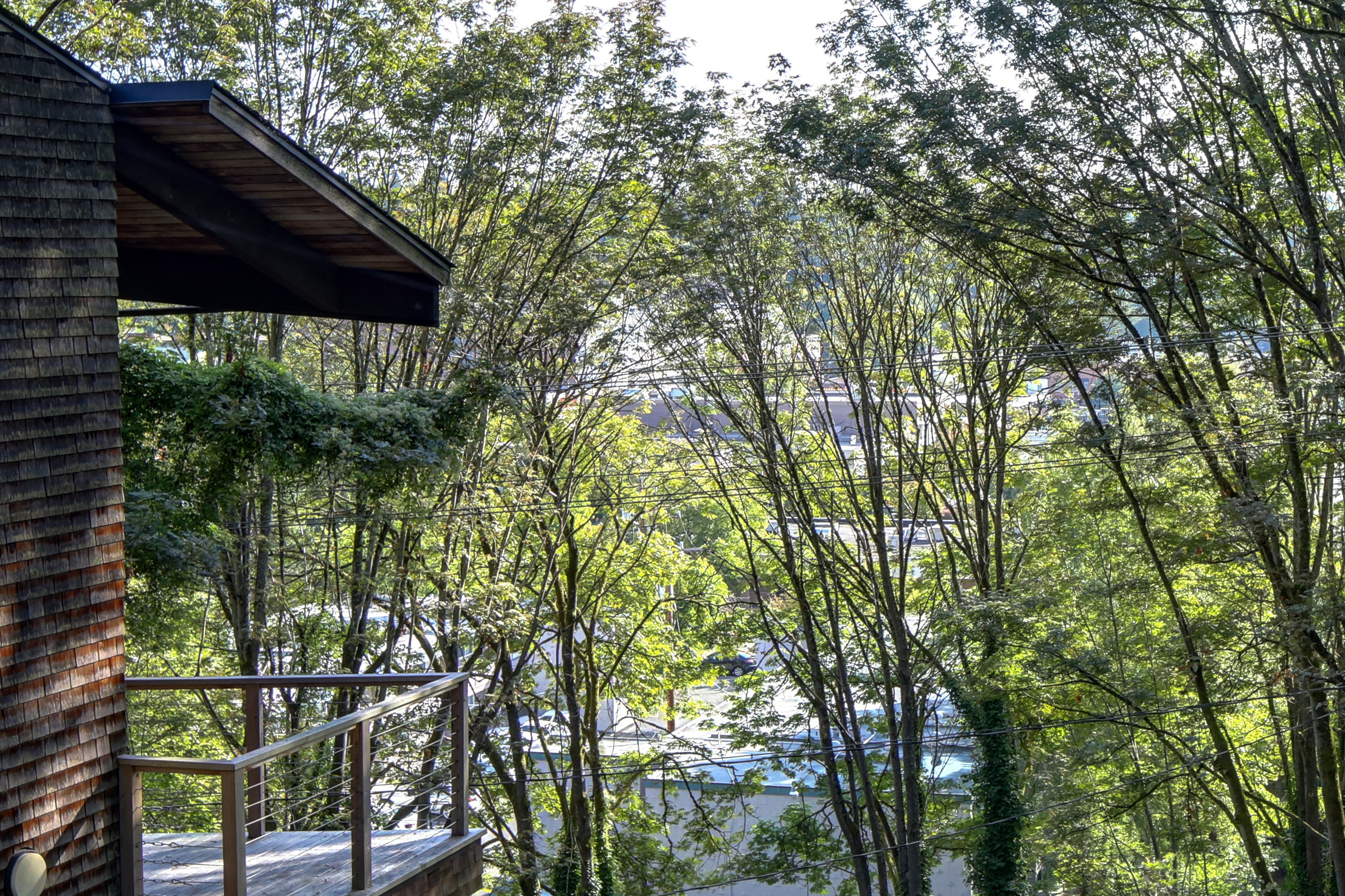 contemporary treehouse in ravenna listed for 800k curbed seattle
