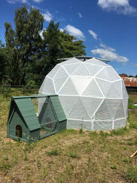 Geodesic Dome Greenhouse And Chicken Coop Was Built For