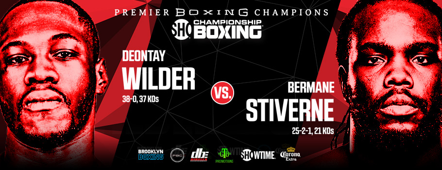 Image result for wilder vs stiverne 2