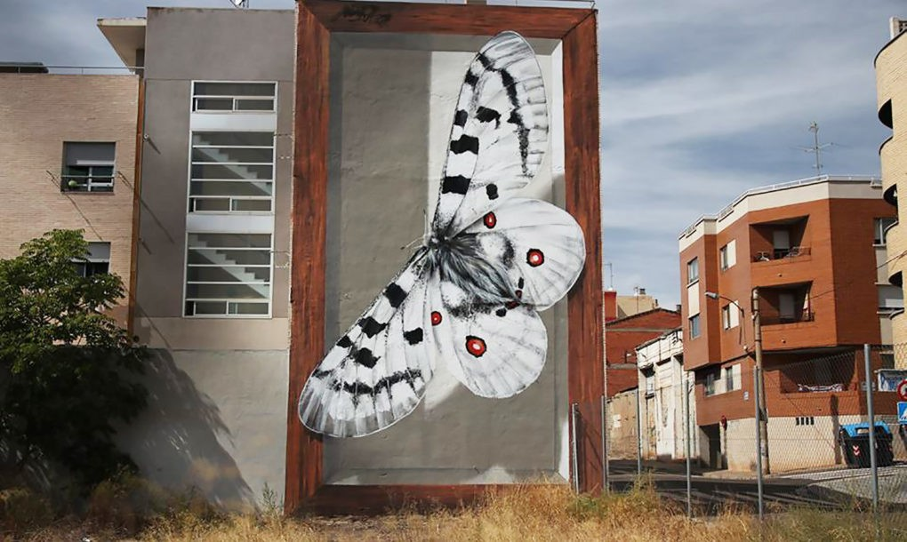 Street Artist Paints Giant Butterfly Specimens On Buildings Curbed - Spanish street artist transforms building facades into amazing artworks