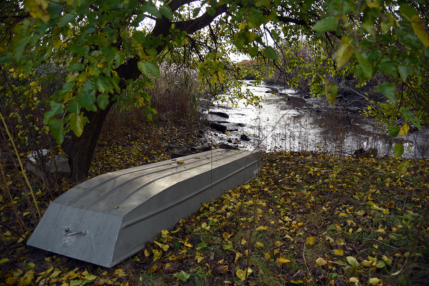 what will it take to bring spring creek back to life curbed ny