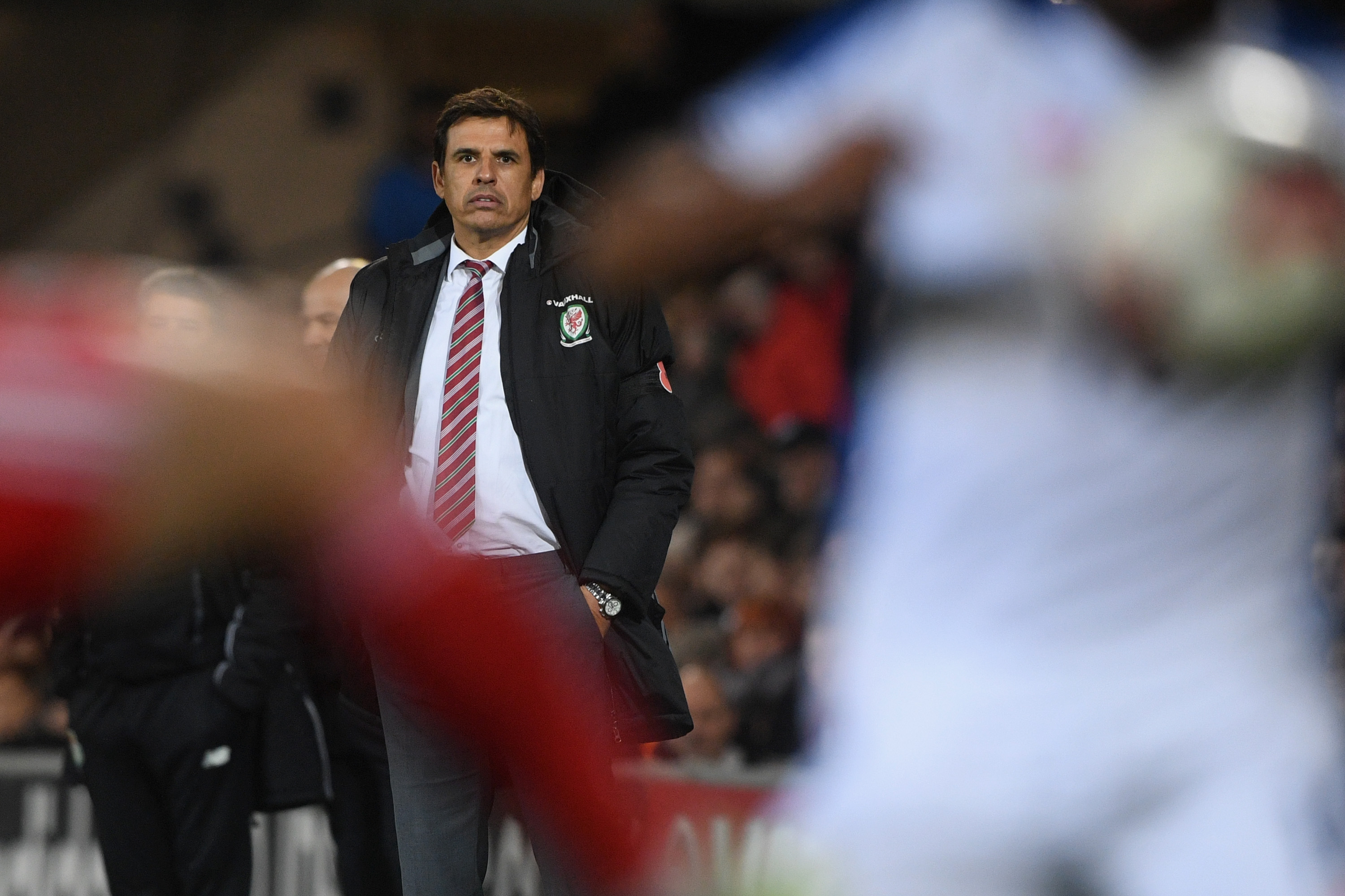 Chris Coleman on brink of accepting Black Cats job — Next Sunderland manager