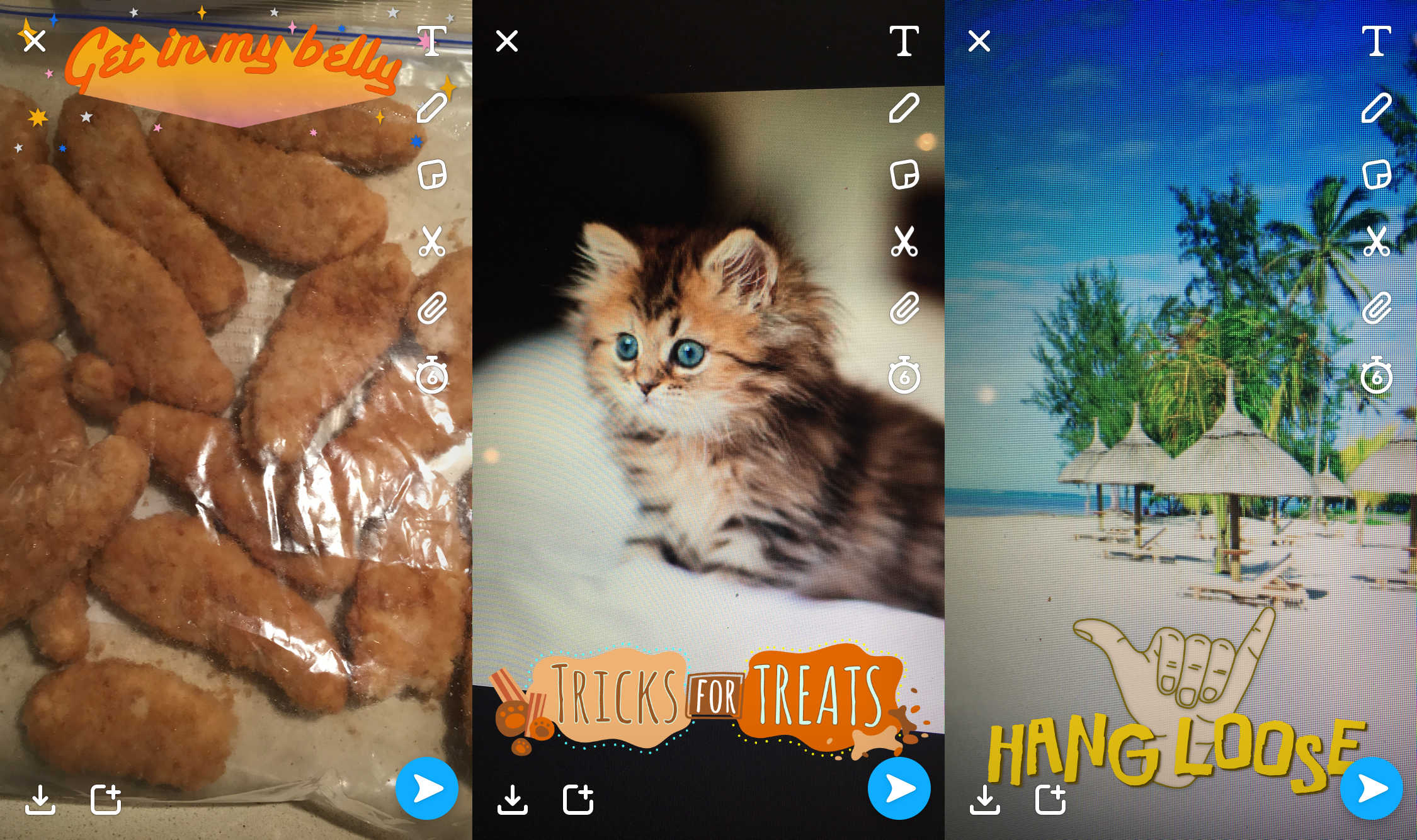 Finally Snapchat Will Recognize Your Pets and Food For More Filter Fun