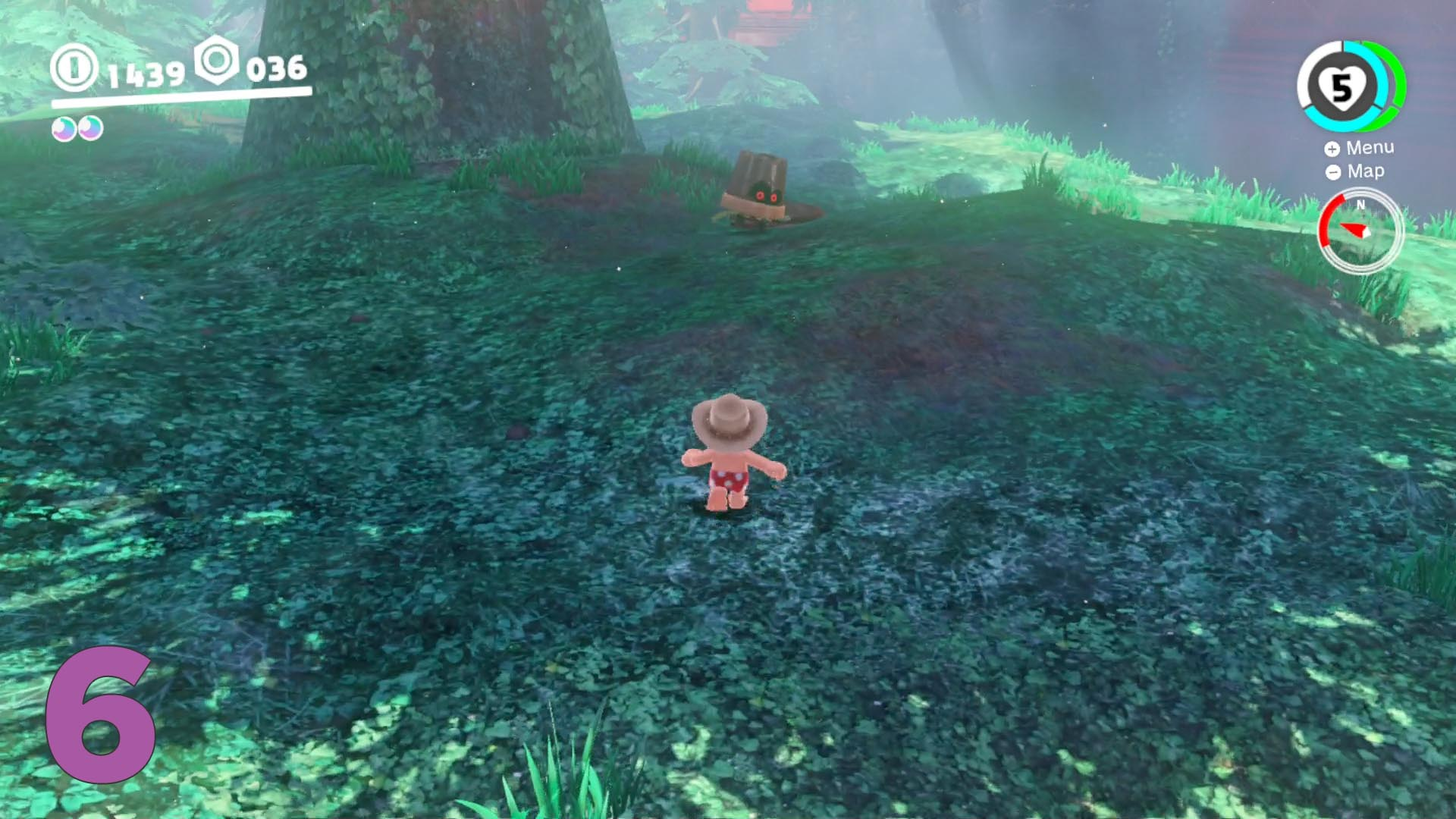 Super Mario Odyssey Guide Wooded Kingdom All Purple Coin
