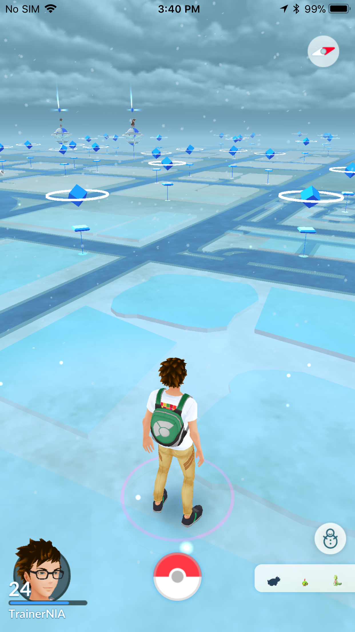 Snow in Pokémon Jog, as of the weather system update.