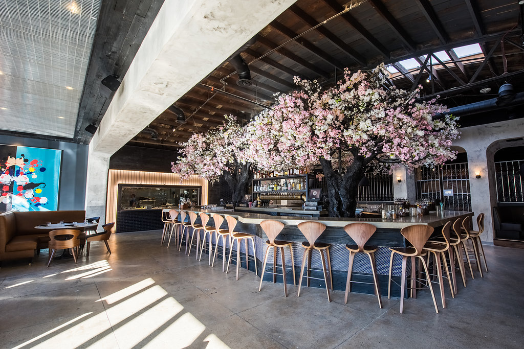 Stylish New Spot Offers Japanese Small Plates And