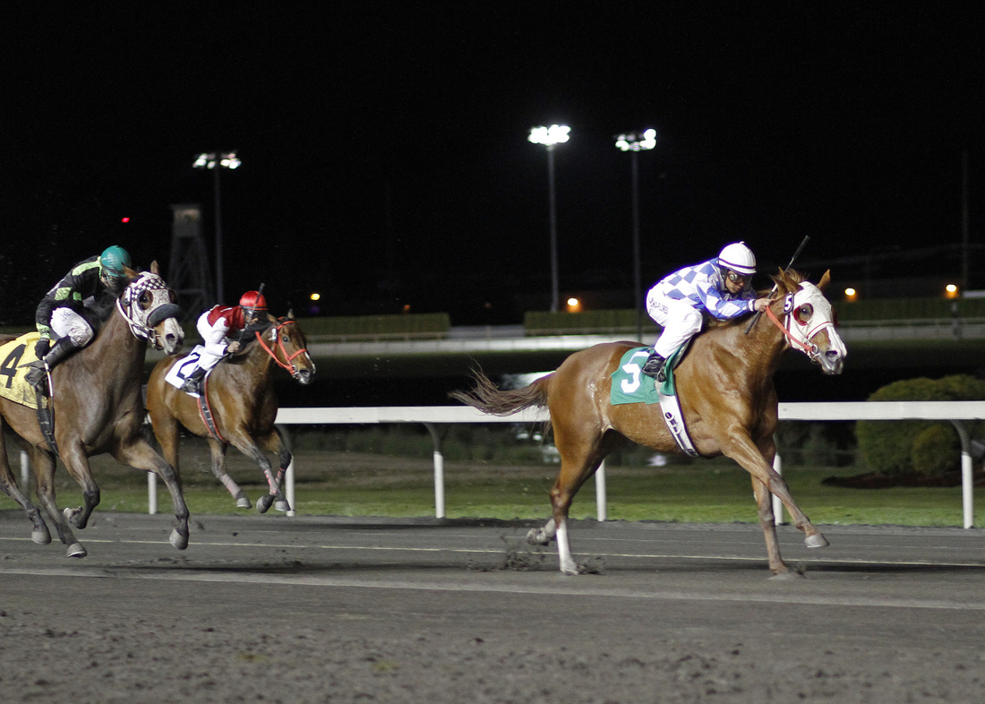 Stephanie Plum and jockey Leonel Camacho-Flores (No. 5) pull away for a 1-½-length victory Friday in the feature race for fillies and mares. April 19, 2013