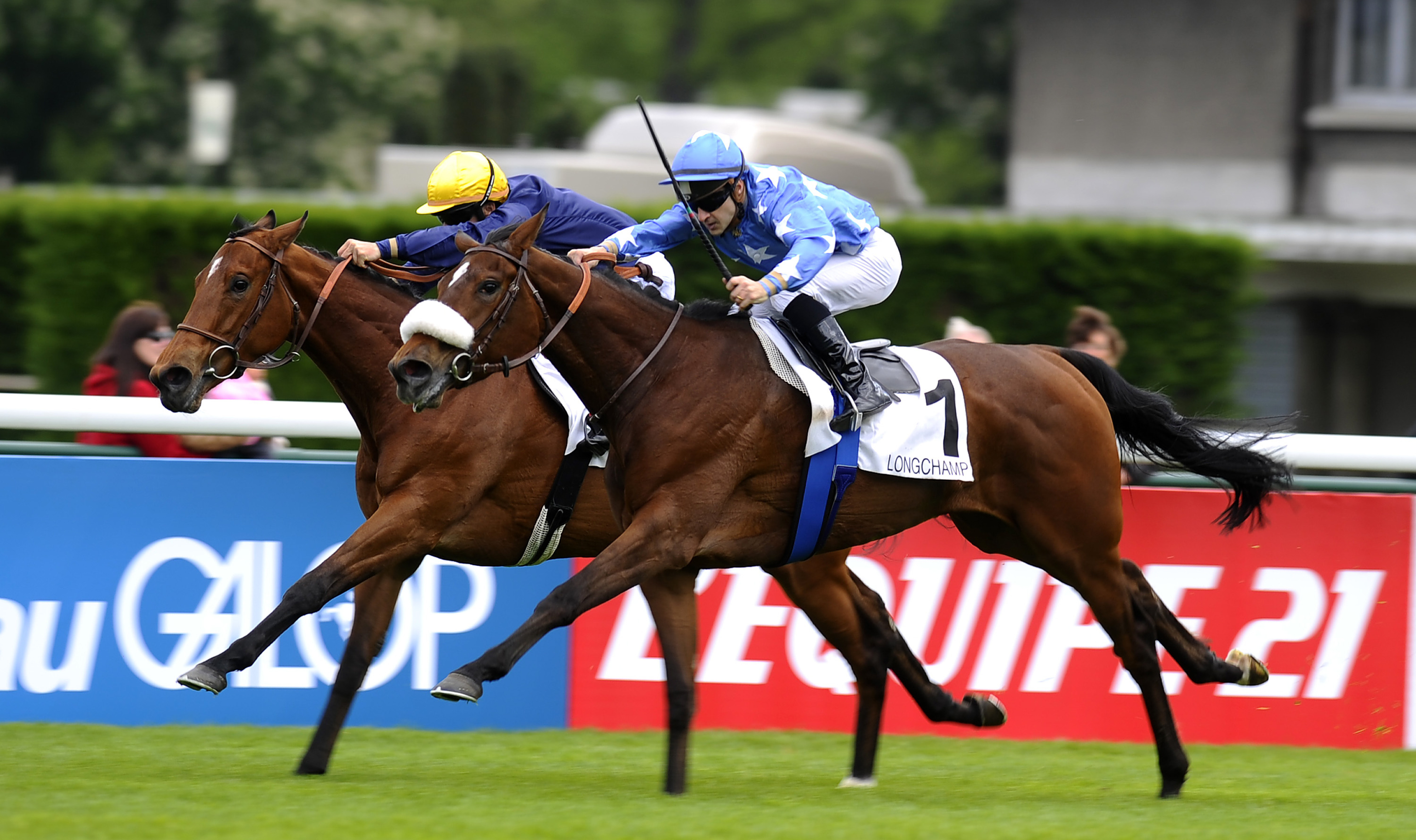 French 1000 Guineas winner Flotilla (FR). The filly also won the 2012 Breeders' Cup Juvenile Fillies Turf.