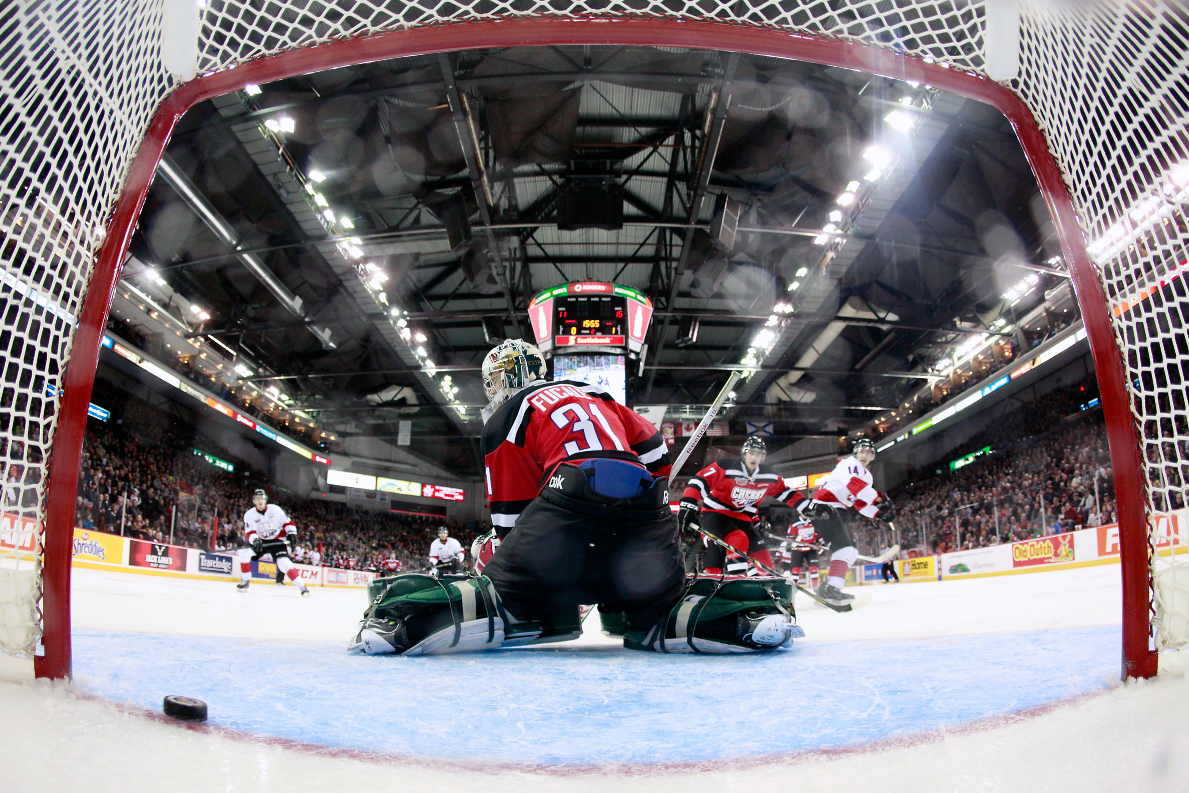 HALIFAX, CANADA - JANUARY 16: Zachary Fucale #31  looks back as the puck crosses the line during the CHL Top Prospects game .