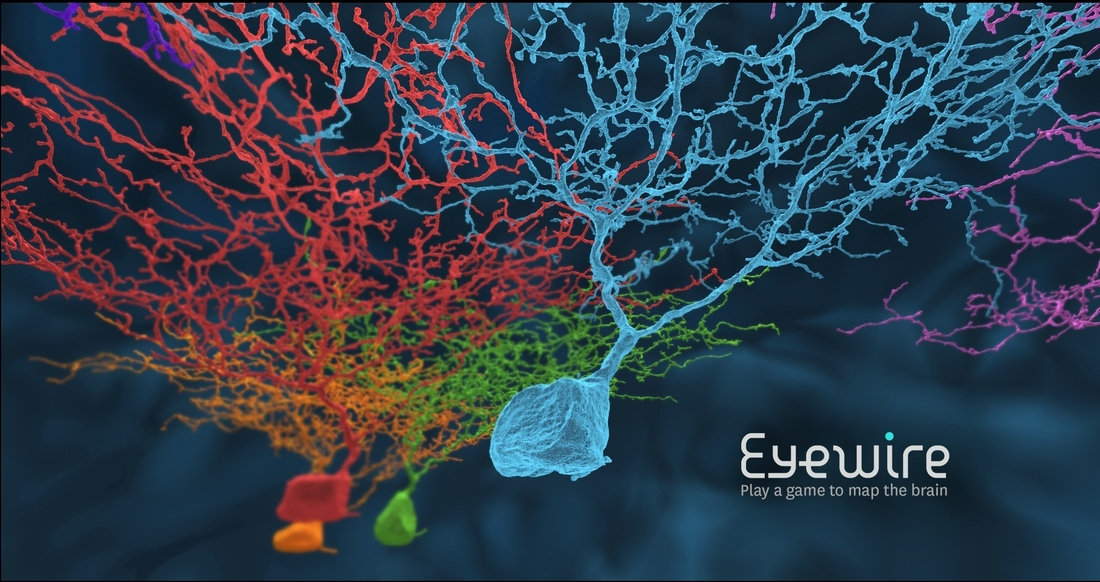 Map the human brain by playing EyeWire
