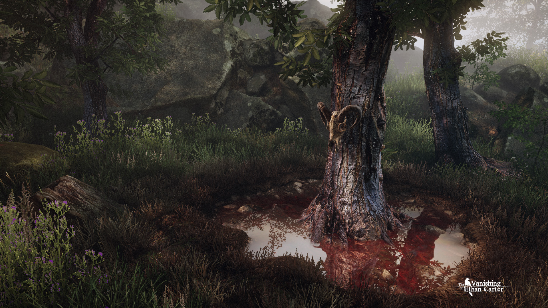 The Vanishing of Ethan Carter dev releases creepy first screenshots