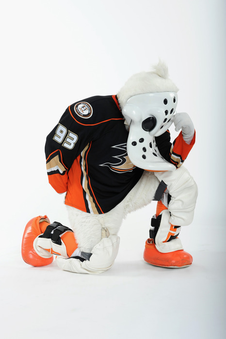 Wild Wing finally himself again after many fire-related plastic surgeries