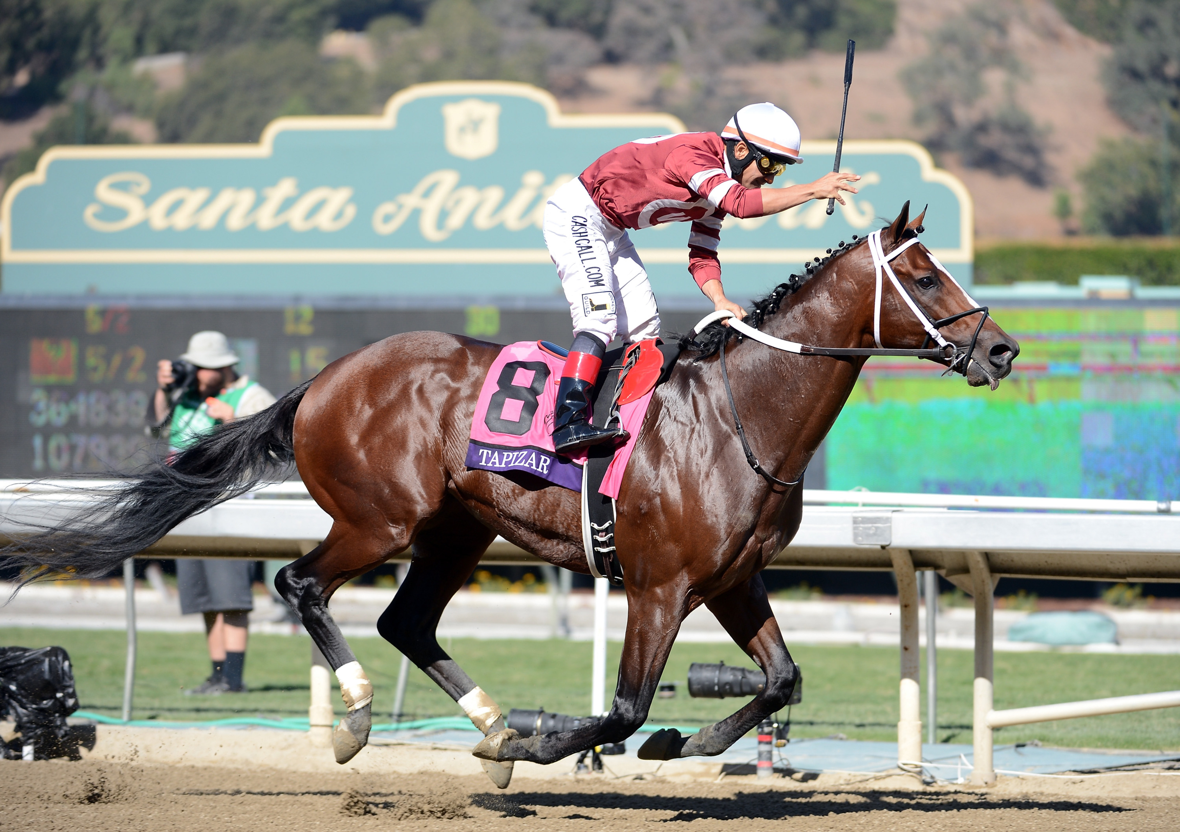 Tapizar won the 2012 Breeders' Cup Dirt Mile at odds of 15/1. What long shots await us in 2013?