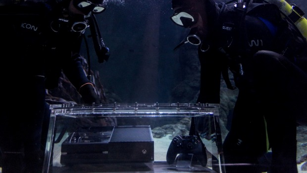 Xbox One being guarded by sharks ahead of launch parties