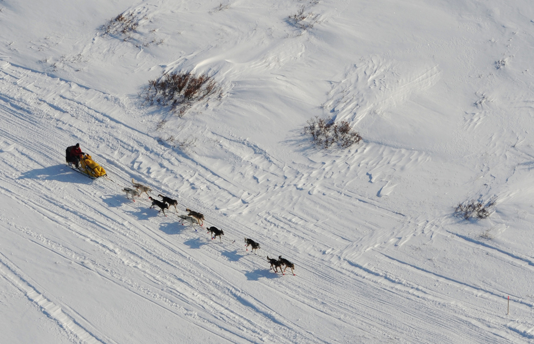 2014 Iditarod: Route, weather and more