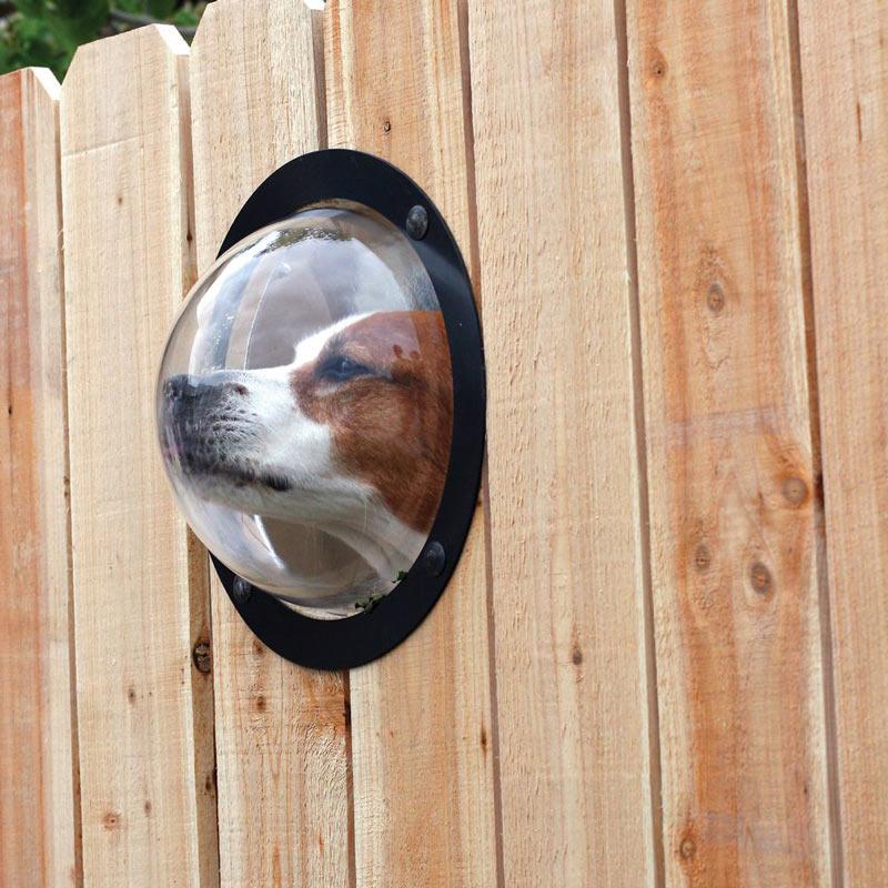 Pet Observation Dome