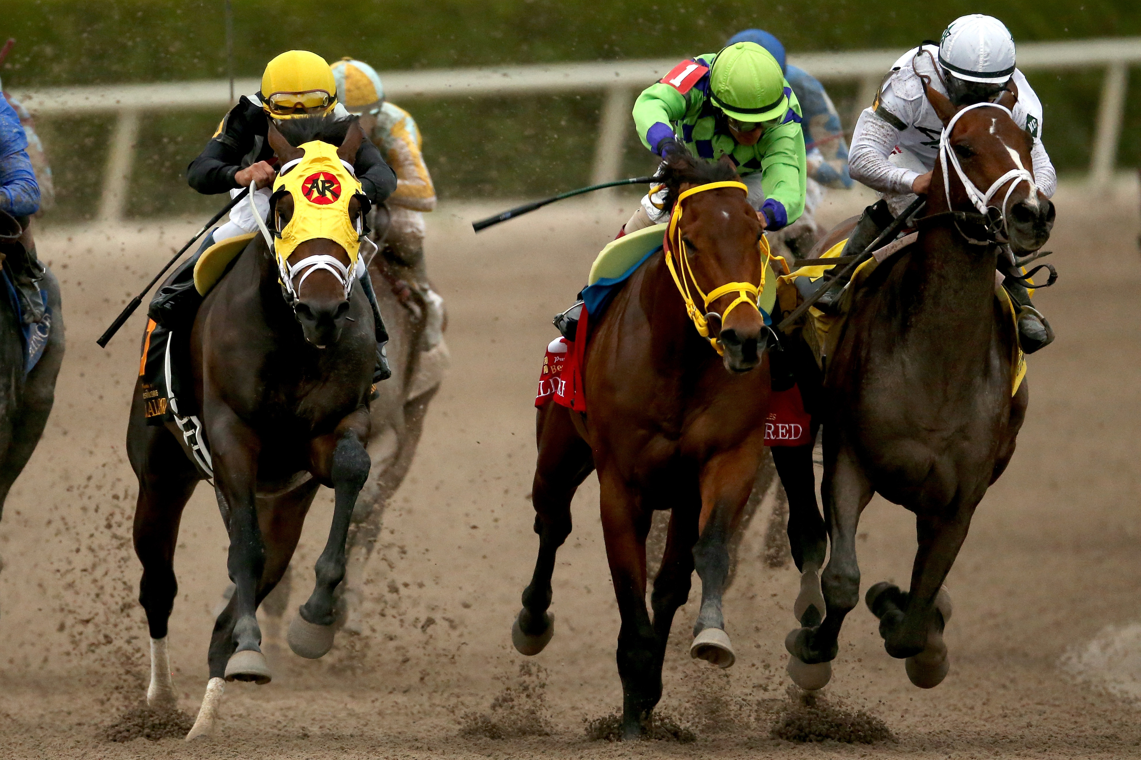 Constitution sneaks by Wildcat Red in the Florida Derby.
