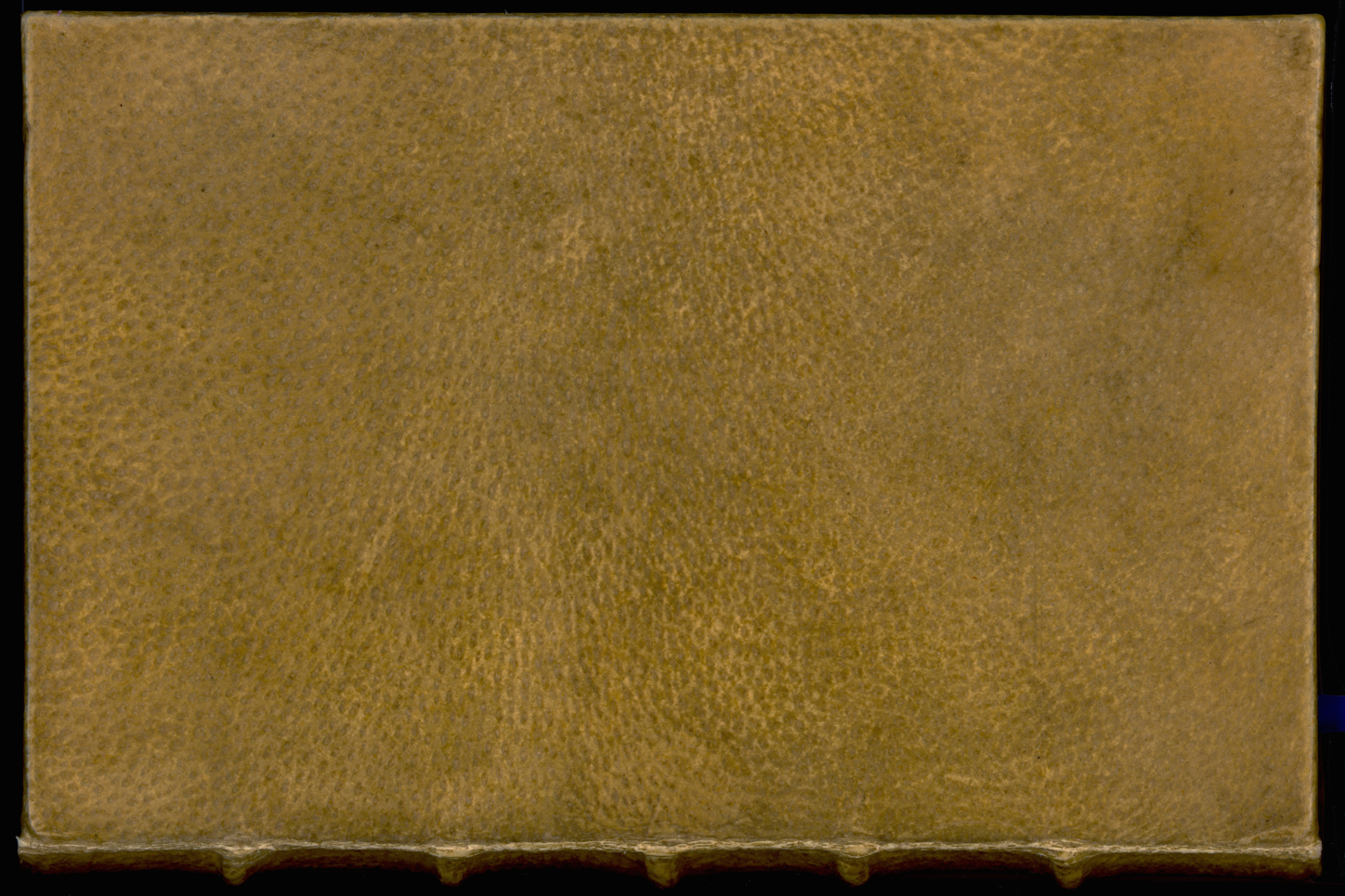 Harvard confirms century-old book is covered in human skin