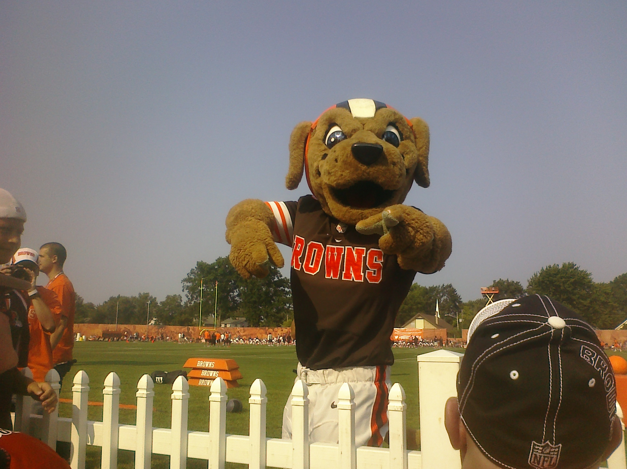 Chomps poses for my camera at Day 6 of Cleveland Browns training camp.