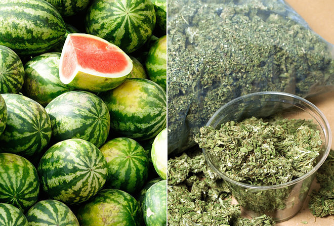 A Mexican Drug Cartel Used Fake Watermelons to Smuggle Weed
