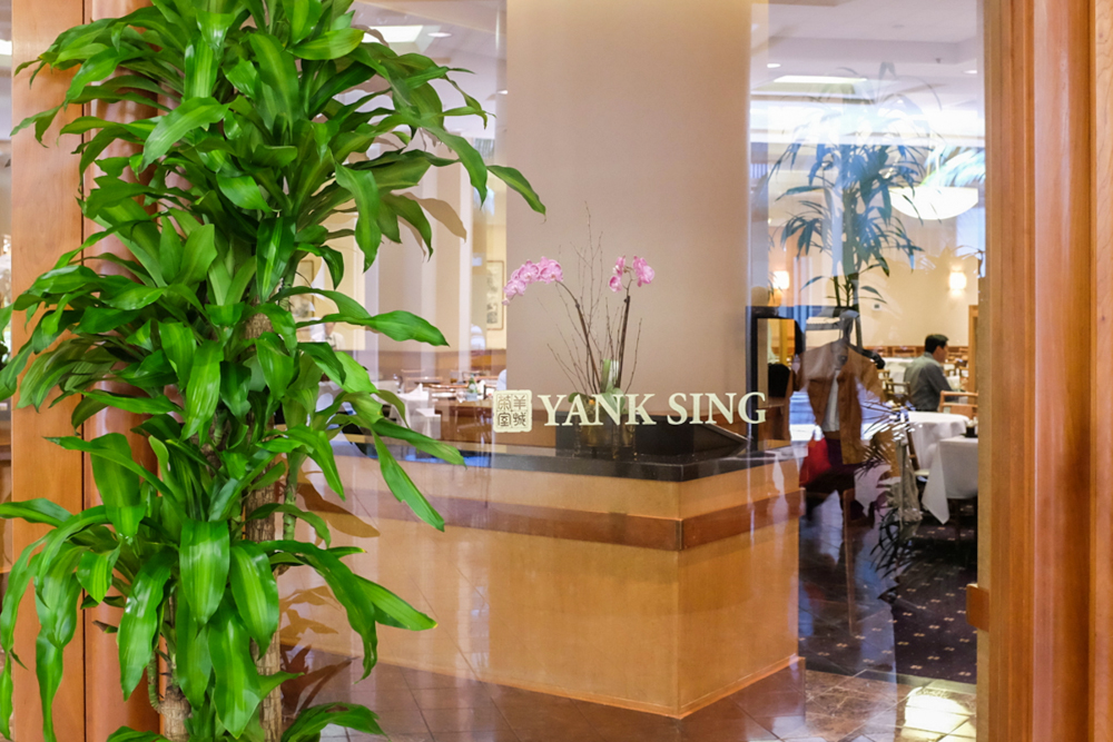The Road to the 38: Dim Sum at Yank Sing