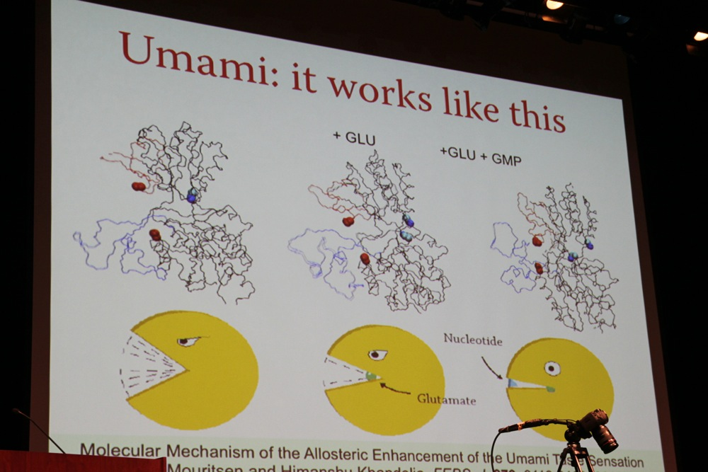UCLA Science & Food Lecture Recap: Umami and Sushi