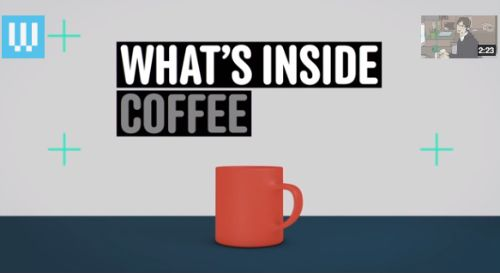 Watch a Breakdown of What's Inside Your Coffee
