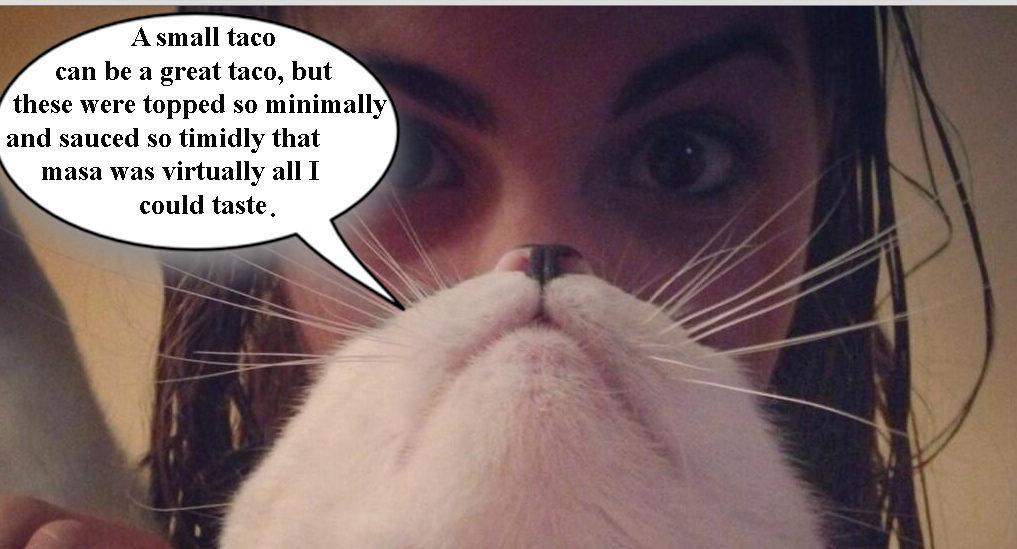 "<span class=""credit"">[<a href=""https://twitter.com/VeronicaGrycan/status/339559765233524736/photo/1"">Catbeard Photo</a>]</span>"