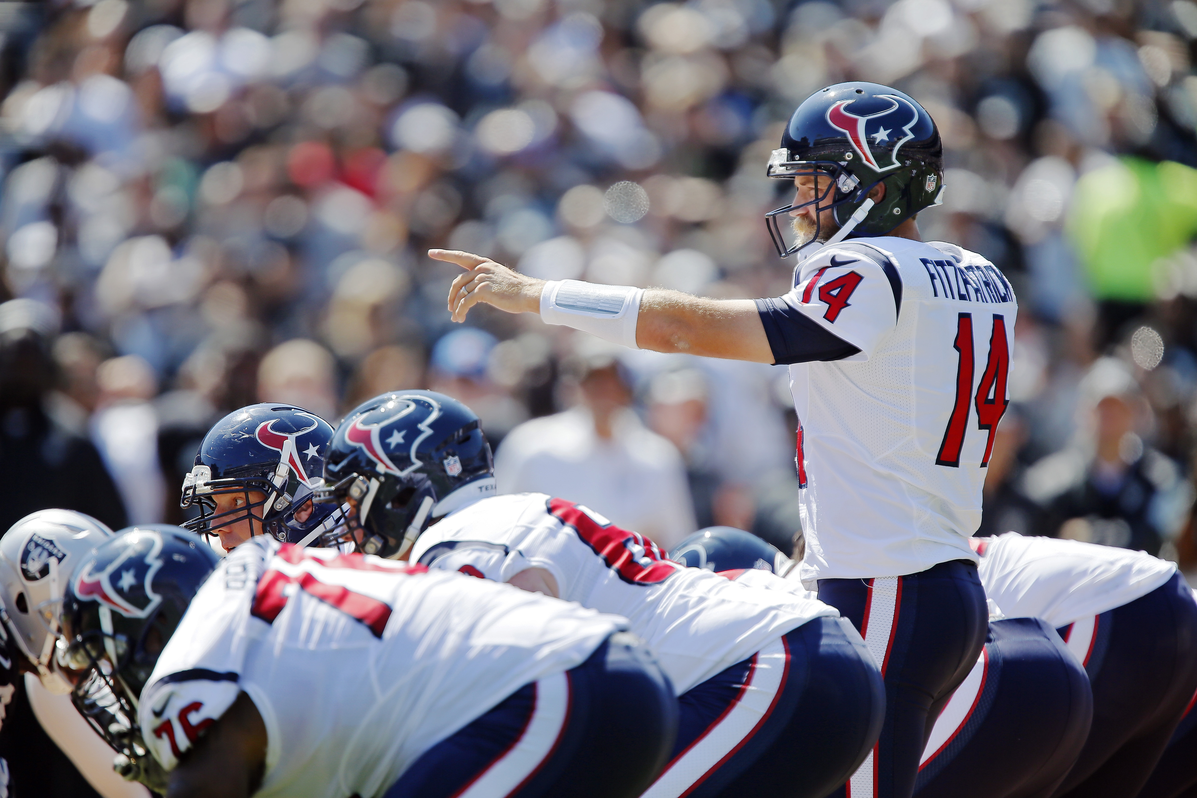 Ryan Fitzpatrick directs the Houston offense