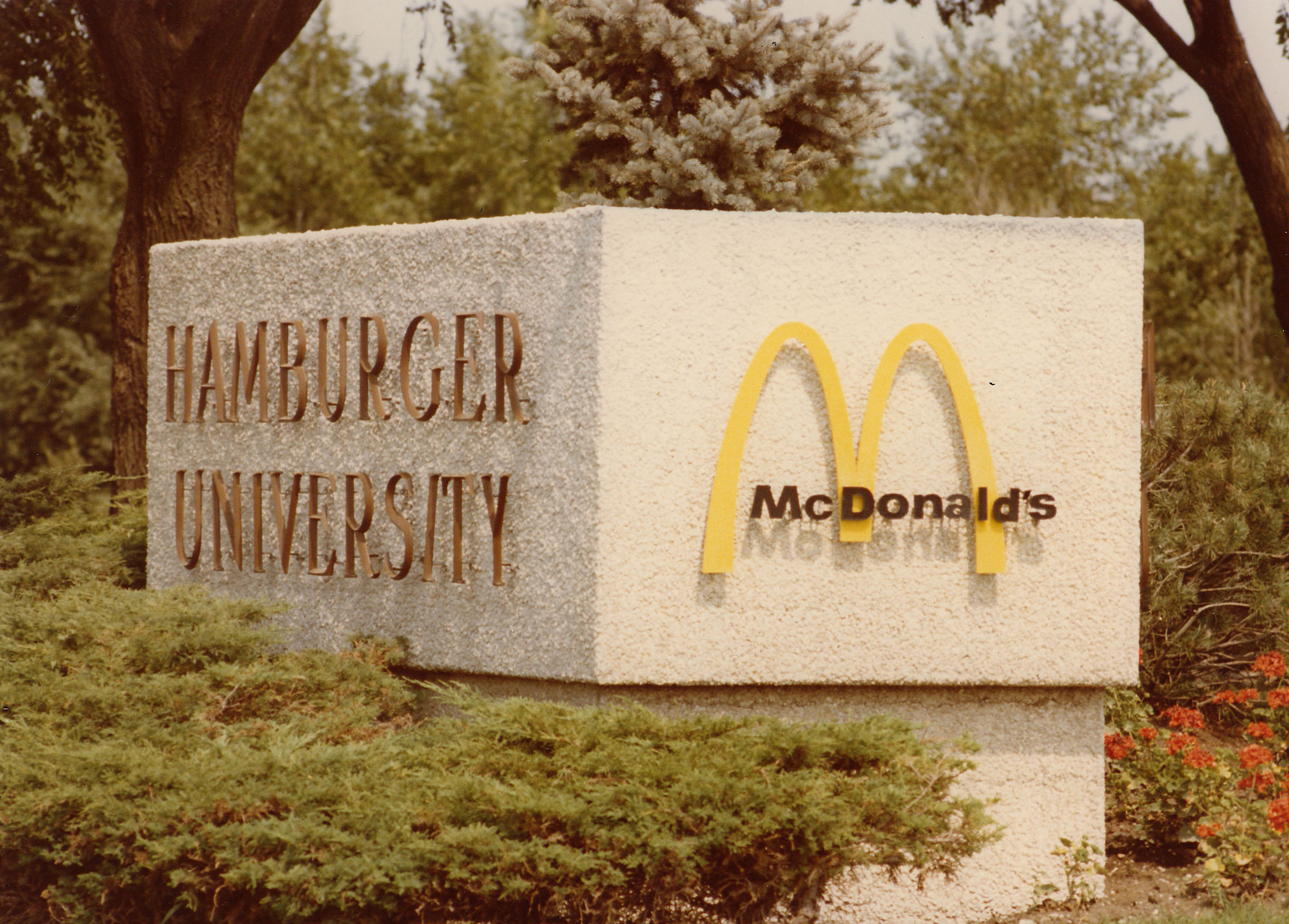 My Father Graduated From Hamburger University