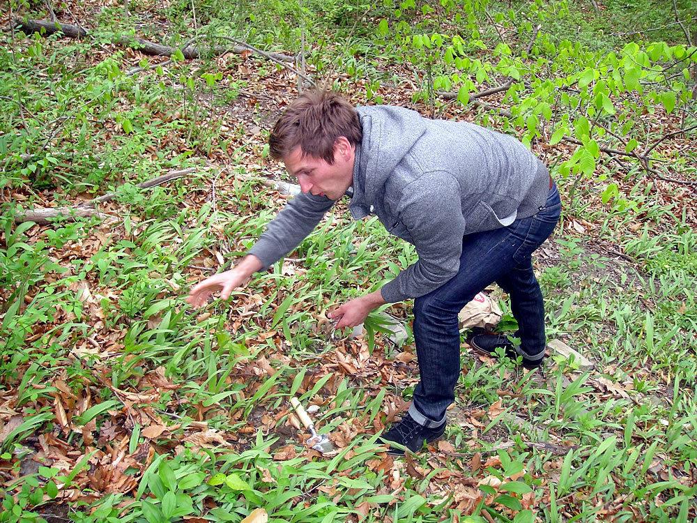 Jason Cichonski picking ramps.