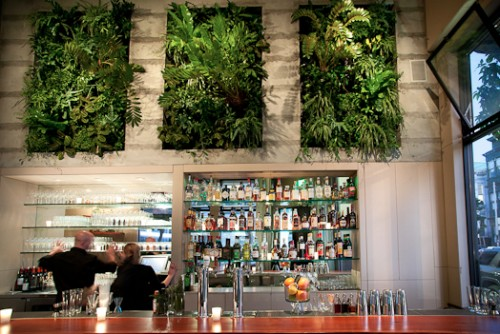 A bar with a wall of plants