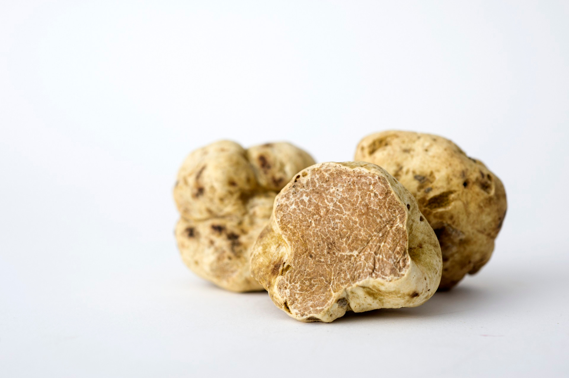 This Year's White Truffle Yield Is Spectacular — and Reasonably Priced