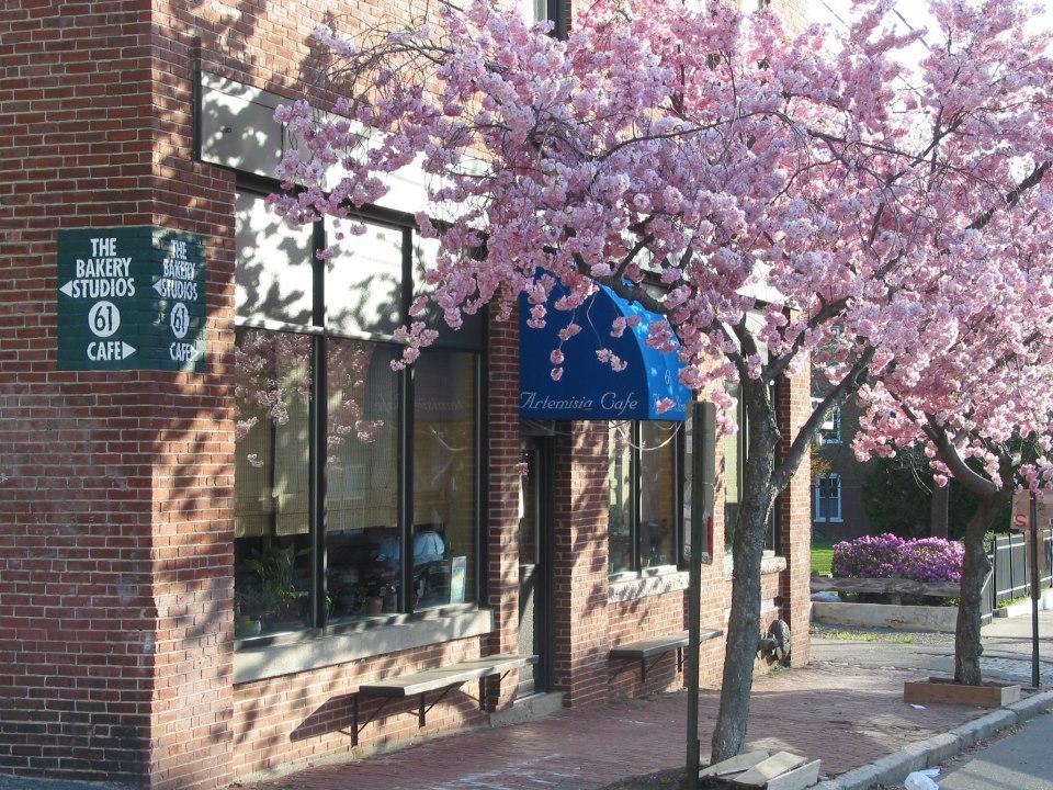 Artemisia Cafe, Portland.