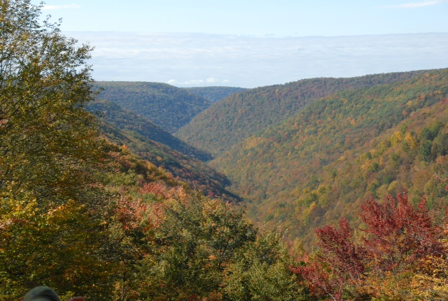 A scene from the Black Forest Trail in Pennsylvania