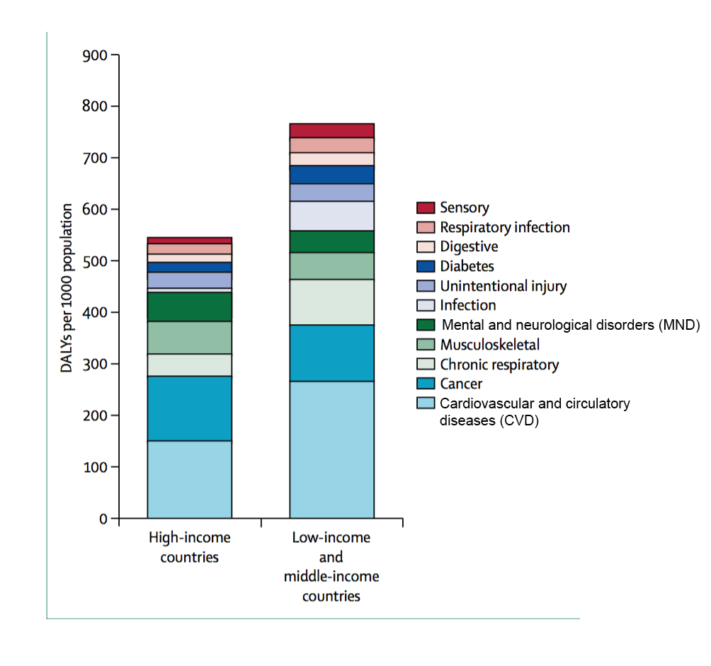The leading contributors to disease burden in people over the age of 60.