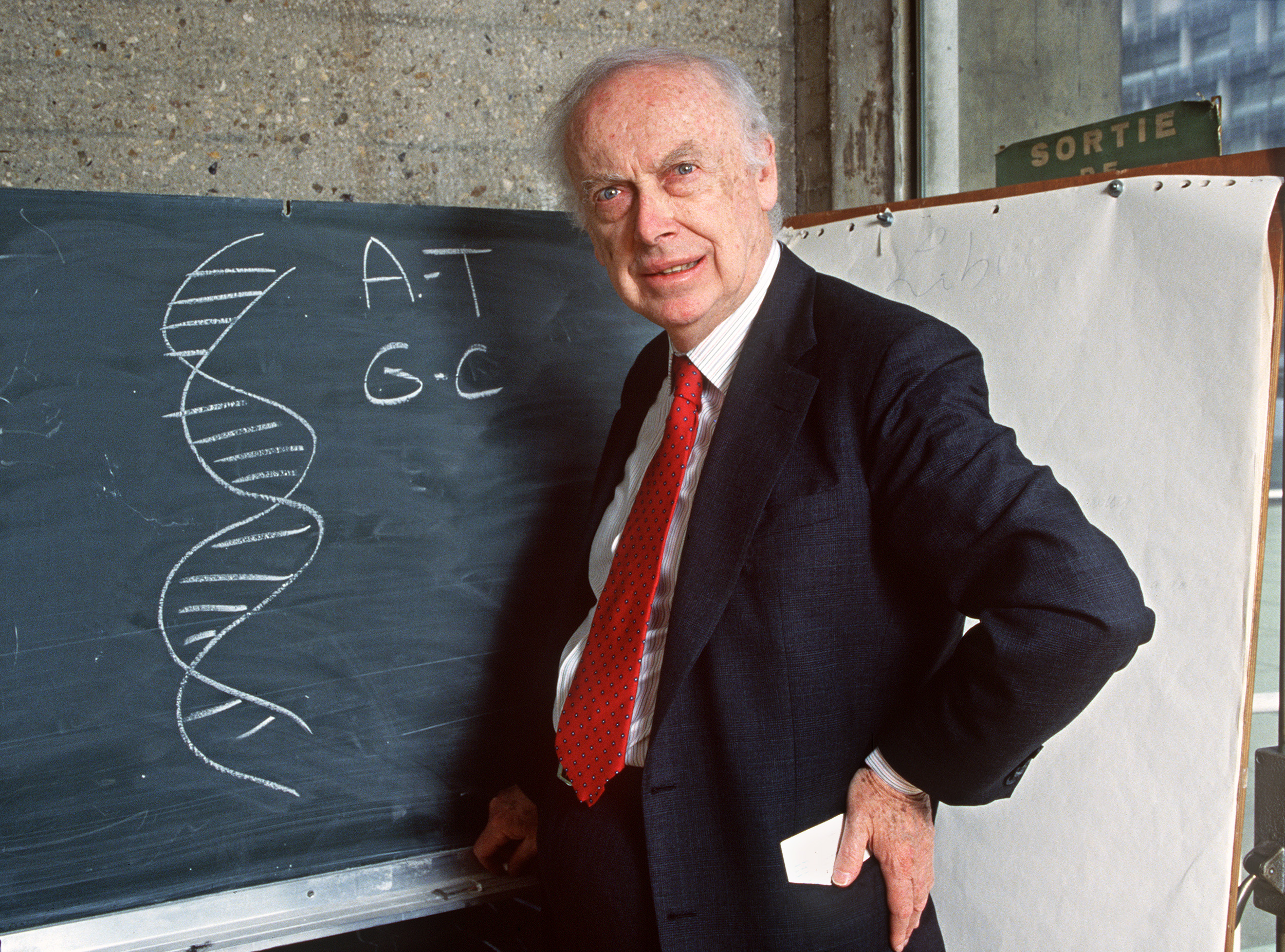 James Watson in 1993, next to a sketch of the structure of DNA