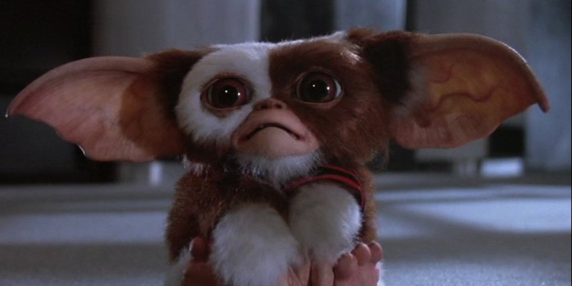 Gizmo from Gremlins knows you need a good non-Christmas Christmas movie to watch.