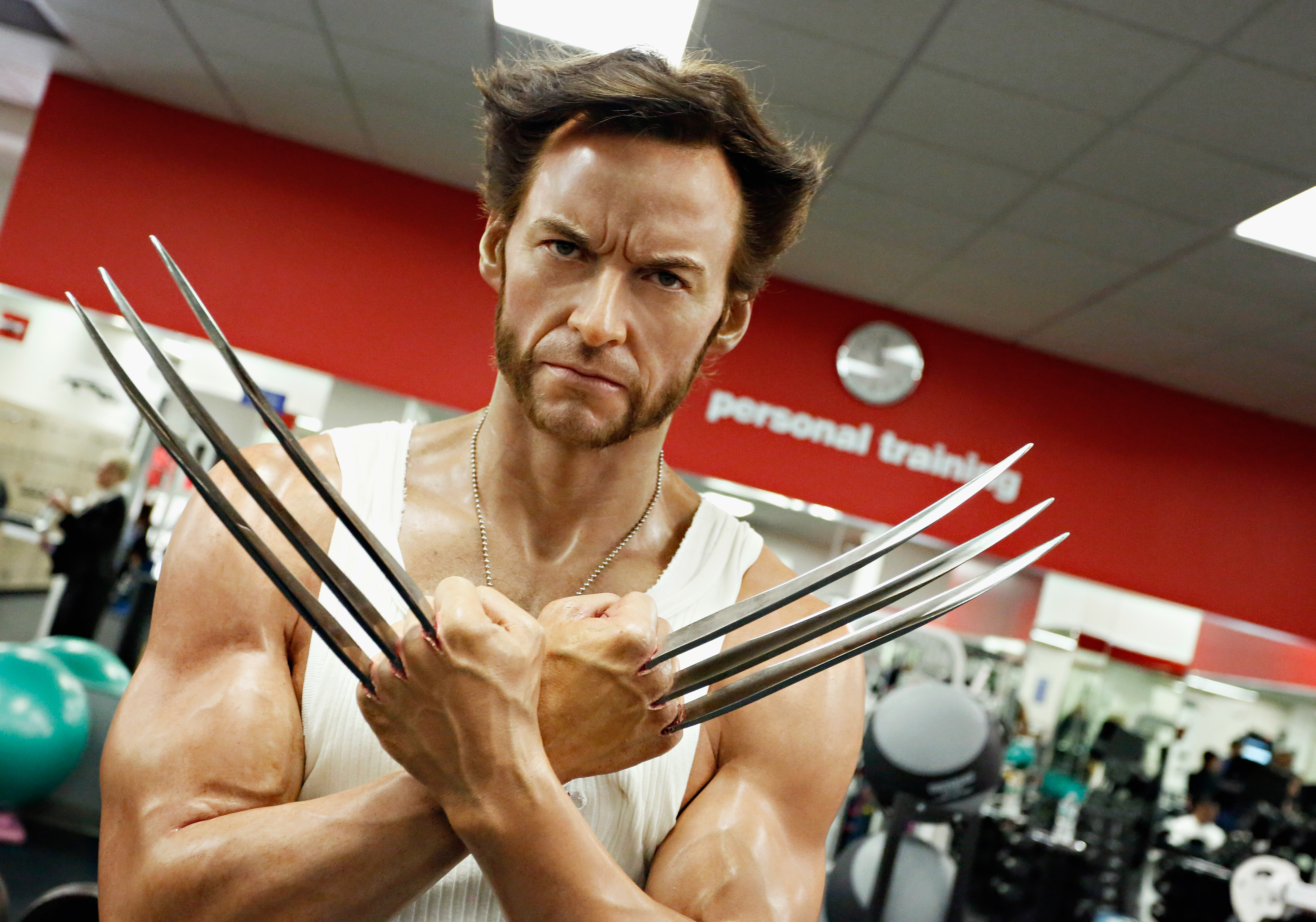 The Wolverine Diet - Vox