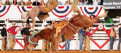 Image via Fort Worth Stock Show & Rodeo