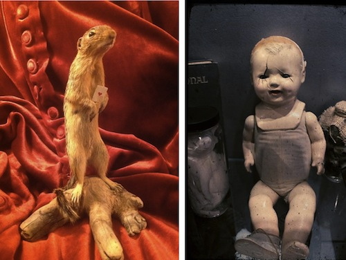 "Image credit: <a href=""https://www.facebook.com/pages/Anastacias-Antiques/110298525683361"">Facebook/Anastacia's Antiques</a>, <a href=""https://www.facebook.com/RequiemShop"">Facebook/Requiem</a>"