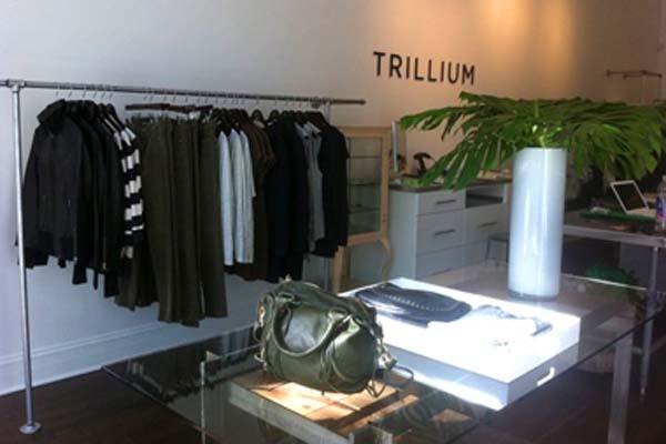 Photo: Trillium
