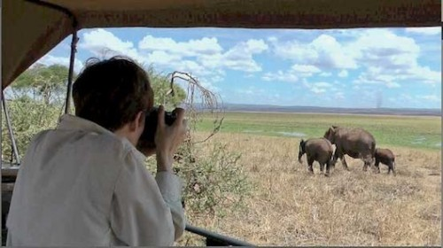 That's me, obsessed with a herd of female elephants and their young, slowly making their way to a swamp in the distance. My guide Chilli Meela took this picture as I snapped away.