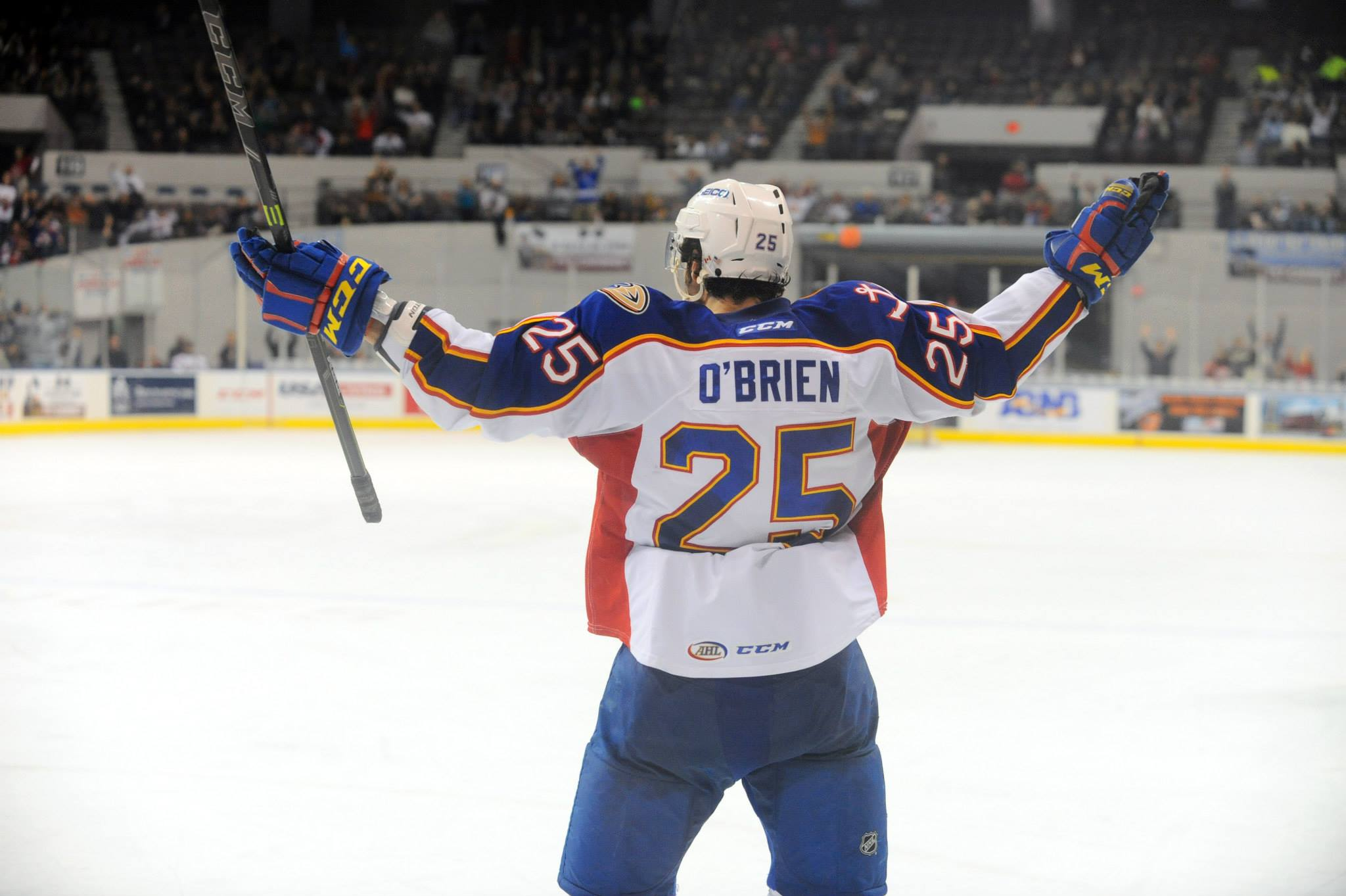 Andrew O'Brien celebrates his first goal as an Admiral Jan 23, 2015