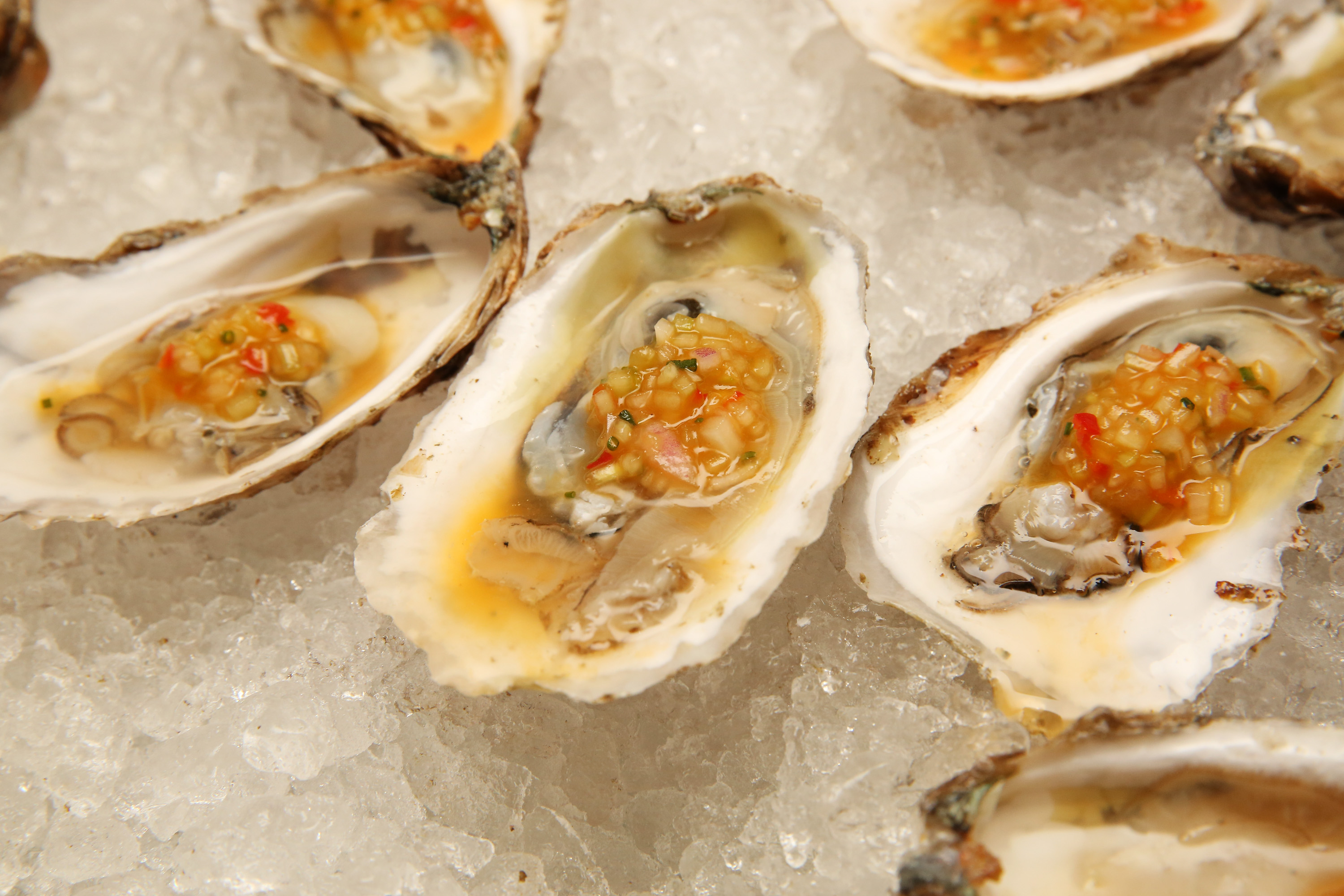 We've Found Miami's Top 10 Spots for Oysters