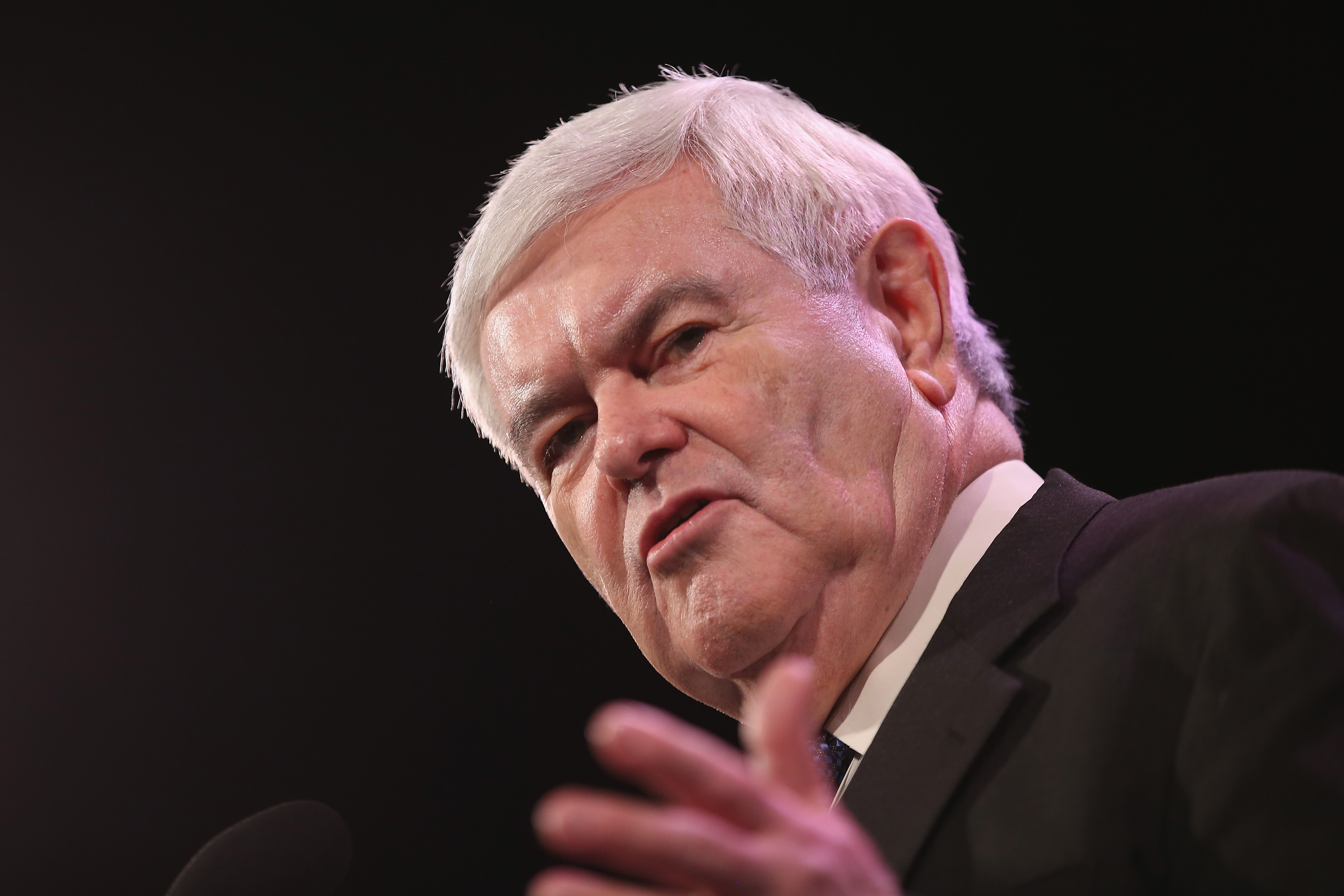 Former Speaker of the U.S. House of Representatives Newt Gingrich speaks to guests at the Iowa Freedom Summit on January 24, 2015 in Des Moines, Iowa.