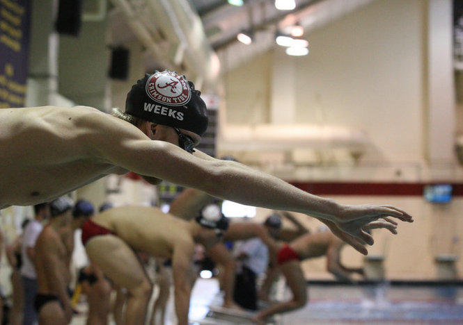 Alabama's swimming and diving team is sending seven athletes to the NCAA Zone B Diving Championships, looking to qualify for the NCAA Championships.